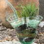 Recycled Glass Bottle Succulent Planter