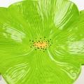 WolfArtGlass-ceramic-poppy-wall-art-bright-green-5759.jpg