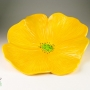 Yellow Poppy Ceramic Wall Art
