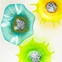 Teal Turquoise Poppy & Lemon Lime, Yellow Starbursts Glass Wall Art
